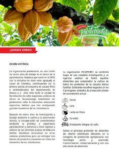 acido urico dieta alimenticia remedios naturales para la enfermedad dela gota