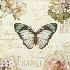Marche de Fleurs Butterfly II by Lisa Audit art print