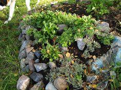 Stone garden at it's best...