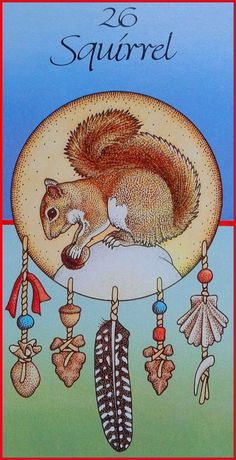 26. Squirrel (Gathering) - Medicine Card by Angela Werneke