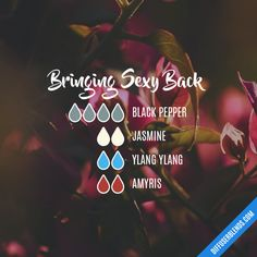 Bringing Sexy Back - Essential Oil Diffuser Blend Essential Oils Guide, Essential Oil Uses, Doterra Essential Oils, Sexy Back, Essential Oil Combinations, Aromatherapy Recipes, Essential Oil Perfume, Essential Oil Diffuser Blends, Marketing News