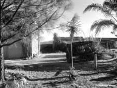 Rancho de Jalostotitlan Jalisco Mexico ... 4 ...