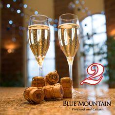 Sparkling Wine, Blue Mountain, Flute, Advent, Vineyard, Champagne, Sparkle, Holidays, Tableware