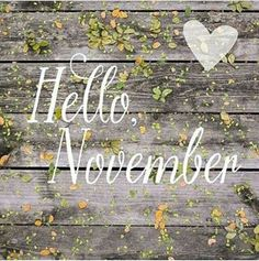 Welcome November Sweet November! Sweet November, Hallo November, Welcome November, Happy October, November 1st, November Birthday, Hello October, Seasons Months, Days And Months