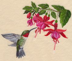 Ruby-Throated Hummingbird and Fuchsia design (M12238) from www.Emblibrary.com