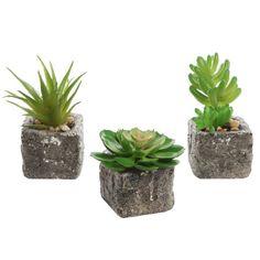 Set of 3 Decorative Mock Stone Ceramic Artificial Succulent Centerpiece Pots / Realistic Faux Plants