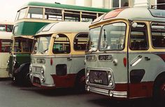 vintage buses   Torbay Classic Bus Rally 2001 « Busman's Holiday