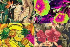 Estampa Tropical | Just Lia