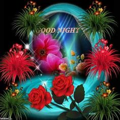 Nigth Good Morning Beautiful Gif, Lovely Good Night, Good Night Flowers, Sweet Night, Good Night Sweet Dreams, Good Night Moon, Good Night Image, Good Night Messages, Good Night Wishes