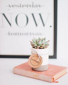 "136 Beğenme, 4 Yorum - Instagram'da V I E N   Details & More (@viendetails): """"Çiçekler, çocukların bile anladığı kelimelerdir."" #succulentlove B. Coxe . . . #vien #viendetails…"""
