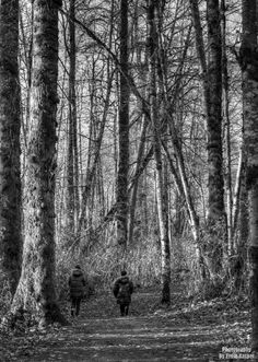 ~Among Giants~ By Ernie Kasper #blackandwhitephotography   #kids   #walking   #forest   #tall   #branches   #nature   #leaves   #trail   #path   #braeisland   #coats   #children   #life