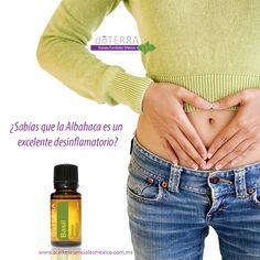 Aceite Esencial de Albahaca, inflamación estomago