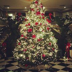 The kardashians Christmas tree