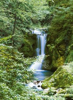 Ideal Decor Waterfall In Spring Wall Mural