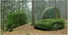 Výsledek obrázku pro skály v cz lesích