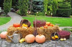Ozdoby ogrodowe na jesień