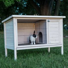 Boomer & George Elevated Outdoor Rabbit Hutch - White Wash - Rabbit Cages & Hutches at Hayneedle