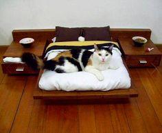 Rhan Vintage. Mid Century Modern Blog.: Mid Century Modern Cat Bed.