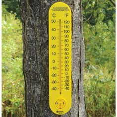 Classroom Thermometer shows Celsius and Fahrenheit, and it works inside or outside!