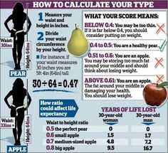 The body fat charts displayed show body fat percentages for ...