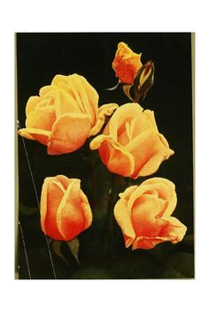 The rose book, a complete guide for amateur ros... (Rose Duchess of Wellington [hybrid tea rose])