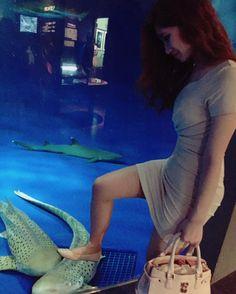 Sorry haha#インスタ #フォロー #Tokyo  #フォロミー #水族館 #楽しい #今日のコーデ #style #wlyg #img #elitenyc #modelsdot #selectmodelmgmt #nextmodels #follow #followforfollow #followme #girl #girls #enjoy #fun #shark #sea #girl #followforfollow #good #today by saki_1293