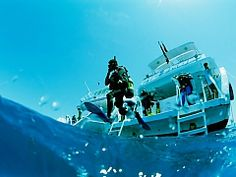 Scuba diving course in Marsa Alam, Red Sea - Egypt online tours Travel Specials, Dive Shop, Best Scuba Diving, Knysna, Diving Course, Visit Egypt, Mexico Vacation, Adventure Activities, Travel Channel