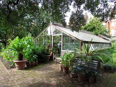 Englands oldest garden Chelsea Physic Garden Greenhouse. London England, Chelsea Garden, English Style, Summer Garden, Wedding Make Up, Pond, Designer, Physics, Wedding Flowers