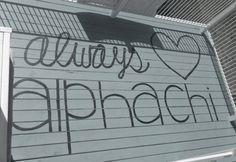 always alpha chi <3
