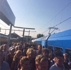 Treinpersoneel Arriva staakt morgenochtend op Vechtdallijn - De Stentor