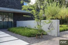 Modern Driveway, Modern Front Yard, Modern Backyard, Garden Pool, Garden Paths, Minimalist Garden, Garden Entrance, Garden Architecture, Plantation