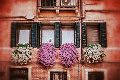 Some beautiful windows in Venice