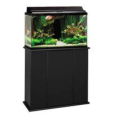 Aquatic Fundamentals Black Upright Aquarium Stand - for 29 and 37 Gallon Aquariums | Petco