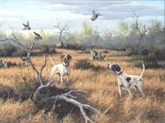 Birds Up by David Drinkard Giclee on Canvas quail hunting scene bird dogs Quail Hunting, Hunting Art, Pheasant Hunting, Fox Hunting, Texas Hunting, Wildlife Paintings, Wildlife Art, Hunting Drawings, Cowboy Art