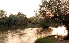 Sunset at Maritza River. Atardecer en el río Maritza. Sonnenuntergang am Maritza-Fluss. Realwobbler.
