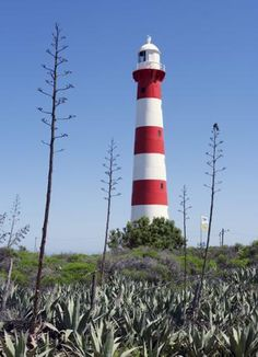 Geraldton, Australia (Olycom) Coast Australia, Australia Travel, Western Australia, Lighthouse Photos, Light Of The World, Water Tower, Light House, Windmill, Amazing Nature