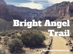 Tips for Surviving the Bright Angel Trail
