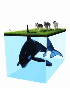 "Thunder - by Josh Keyes SOLD 2008. Edition of 100 24"" x 32"" (61 x 81cm) Giclee on Hahnemuhle Velvet Paper 308 gm Signed and numbered in pencil and blind stamped"