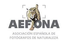 Gracias a nuestros patrocinadores - http://www.aefona.org/gracias-a-nuestros-patrocinadores/