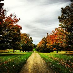 autumn-for-a-year:arnab11:(Taken with Instagram at Storm King Art Center)