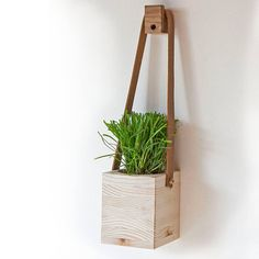 Are You Interested In Our Hanging Wall Planter With Indoor Plant Pots Need