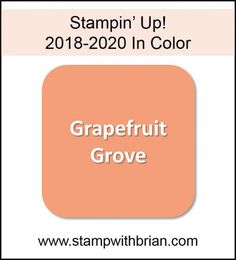 Grapefruit Grove, Stampin' Up! 2018-2020 In Color