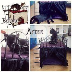 They totally gothed up this kat bed....i love it.