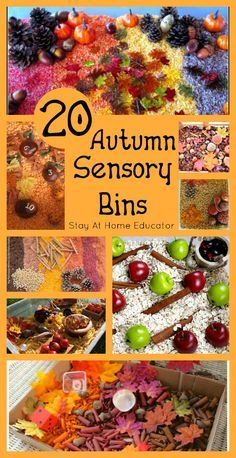 Autumn Sensory Bins - Stay At Home Educator Wow! 20 autumn sensory bins perfect for any fall preschool theme! - Stay At Home EducatorWow! 20 autumn sensory bins perfect for any fall preschool theme! - Stay At Home Educator Fall Sensory Bin, Sensory Tubs, Sensory Boxes, Sensory Diet, Fall Preschool Activities, Toddler Activities, Kindergarten Sensory, Preschool Curriculum, Motor Activities