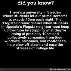 Let's start this at every college!  #college #interesting #scream #tradition   Share the helpful knowledge! Tag your friends in the comments.  We wrote a book with over 50 original fact illustrations!  Buy it on Amazon today!  http://amzn.to/2gzSCrU  We post different content on all our different social media channels. Follow all our accounts so you don't miss out! http://ift.tt/1FVnDRT http://ift.tt/14BKkrR http://twitter.com/didyouknowfacts http://fact-snacks.com  #DYN #FACTS #TRIVIA #TIL…