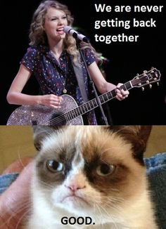 Grumpy Cat--I think this is my favorite because of my love for Grumpy Cat and disdain for Taylor Swift!
