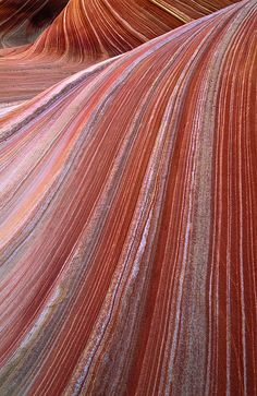 Utah, USA red rocks  #proofwoodcolor