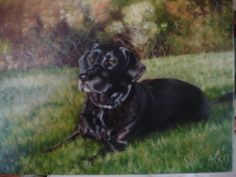 Bella, oil painting by Ann Ohr