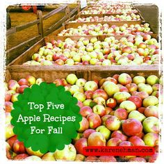 My top five apple recipes for fall. Perfect for teachers, neighbors and your family! YUM!