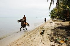 great shot of horses on the beach at Hopkins, Stann Creek!